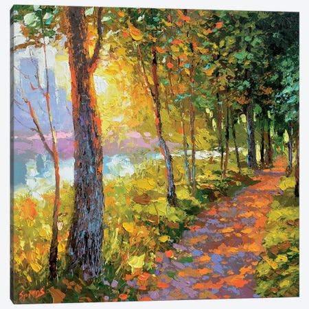 Evening Alley Canvas Print #DMT57} by Dmitry Spiros Canvas Wall Art
