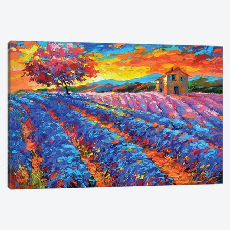 Evening In Provence Canvas Print #DMT60} by Dmitry Spiros Canvas Wall Art