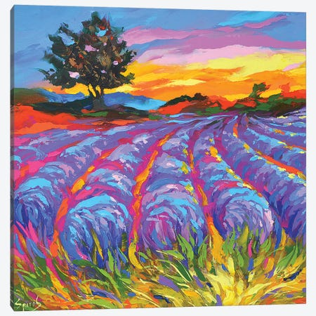 Evening In Tuscany Canvas Print #DMT61} by Dmitry Spiros Canvas Wall Art