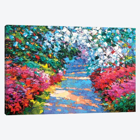 Garden Path Canvas Print #DMT80} by Dmitry Spiros Canvas Art