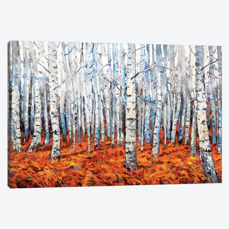 In The Birch Forest Canvas Print #DMT91} by Dmitry Spiros Canvas Print
