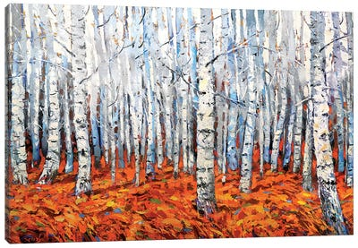 In The Birch Forest Canvas Art Print
