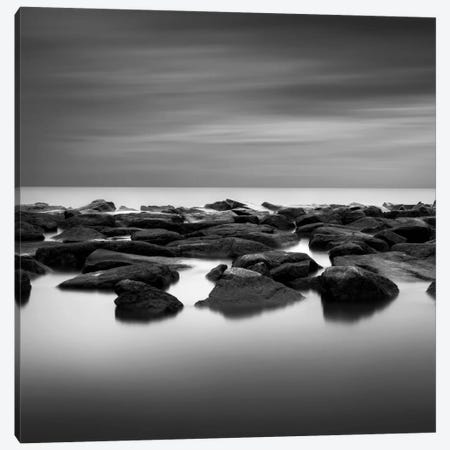 High Tide Canvas Print #DMV15} by Dave MacVicar Canvas Artwork