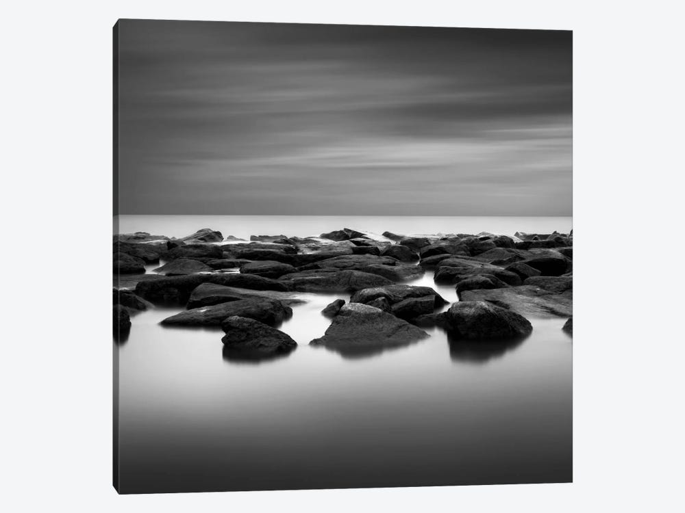 High Tide by Dave MacVicar 1-piece Art Print