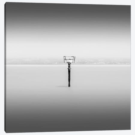 Isolation Canvas Print #DMV18} by Dave MacVicar Canvas Print
