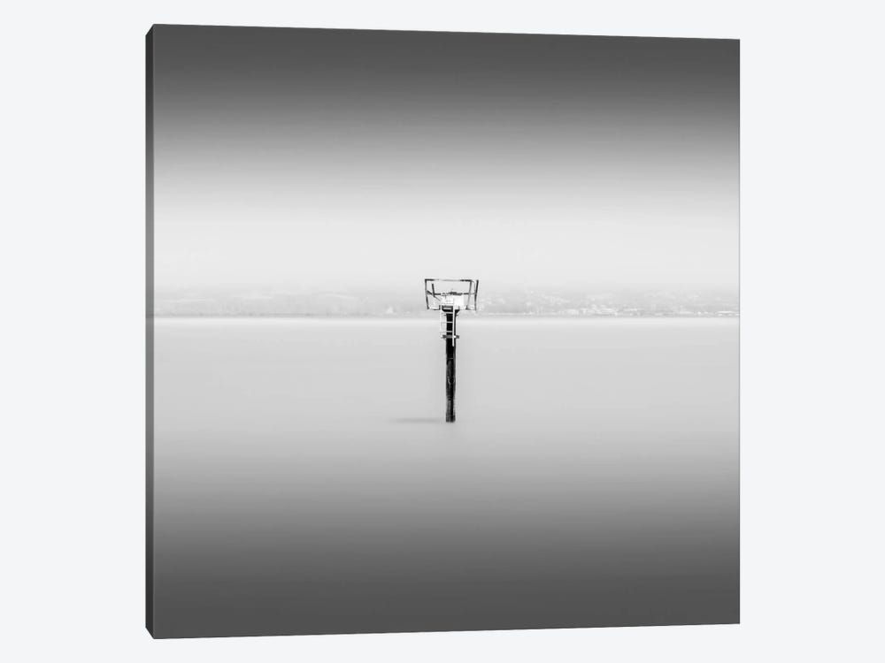 Isolation by Dave MacVicar 1-piece Canvas Art