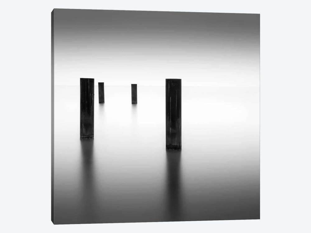 Lucid by Dave MacVicar 1-piece Canvas Art