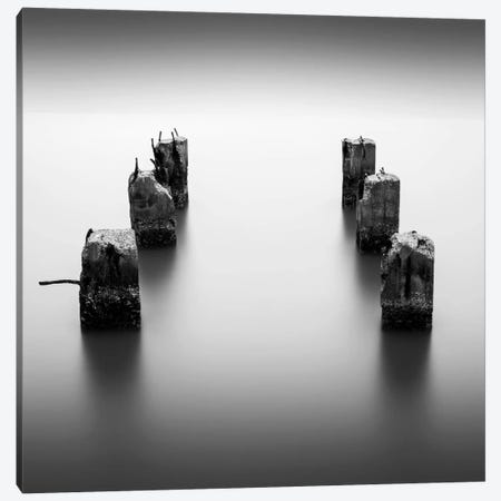 Pillars Canvas Print #DMV25} by Dave MacVicar Art Print