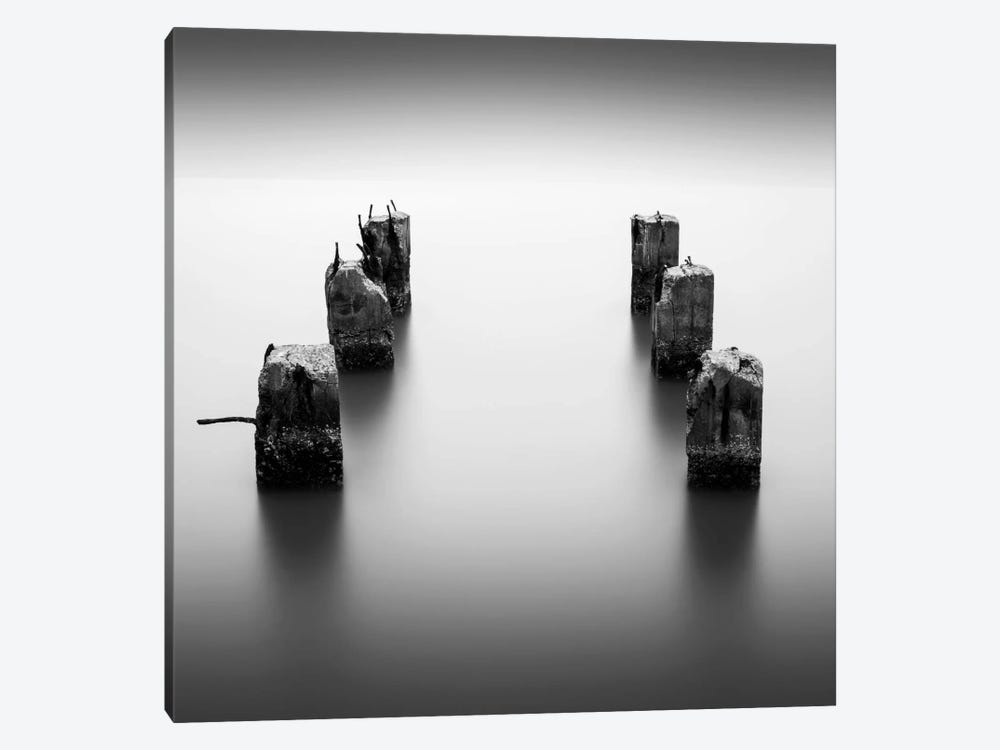 Pillars by Dave MacVicar 1-piece Canvas Art