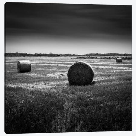 Rural Canvas Print #DMV28} by Dave MacVicar Canvas Art