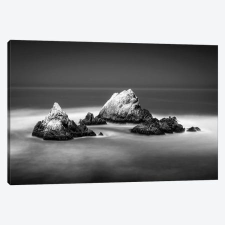 Seal Rocks Canvas Print #DMV31} by Dave MacVicar Canvas Art Print