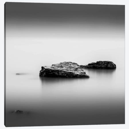 Simple Canvas Print #DMV33} by Dave MacVicar Canvas Print