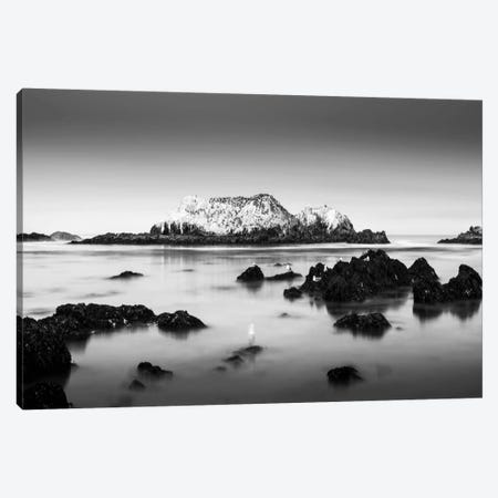 The Gathering Canvas Print #DMV40} by Dave MacVicar Canvas Artwork