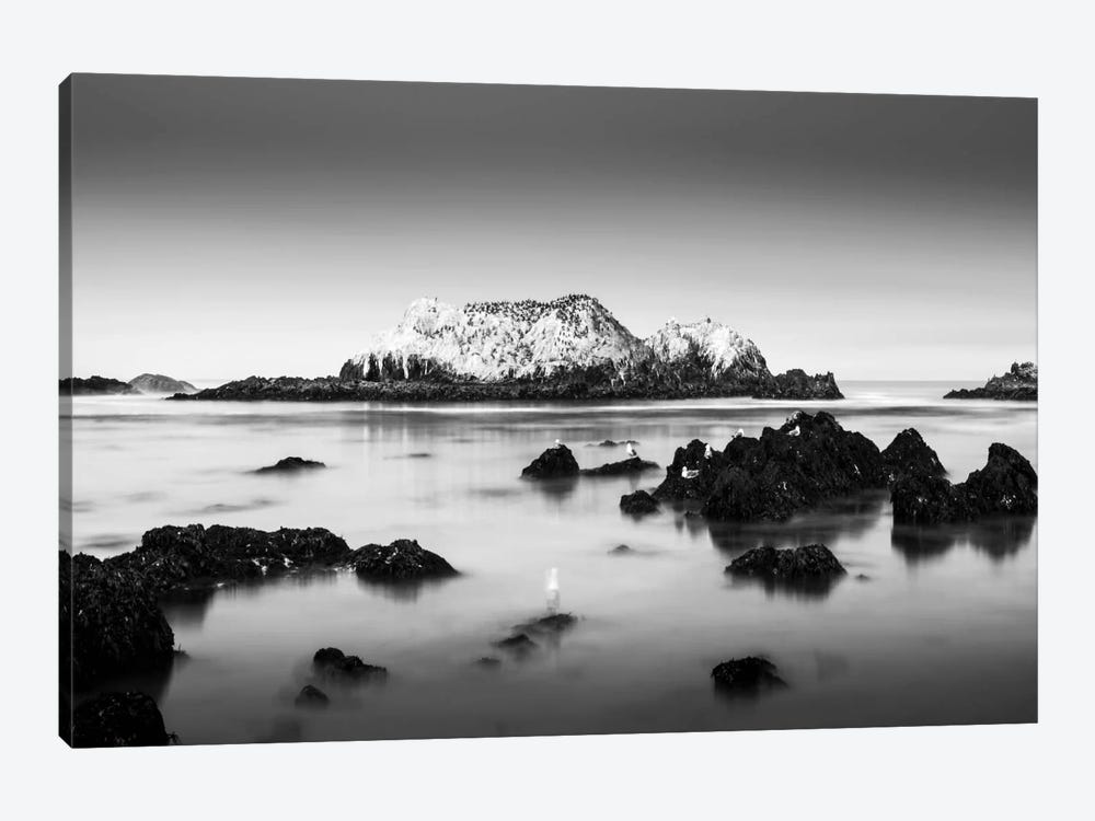 The Gathering by Dave MacVicar 1-piece Art Print