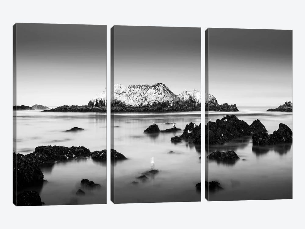 The Gathering by Dave MacVicar 3-piece Canvas Art Print