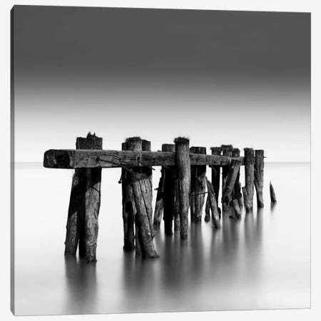 Weathered Canvas Print #DMV45} by Dave MacVicar Canvas Art Print