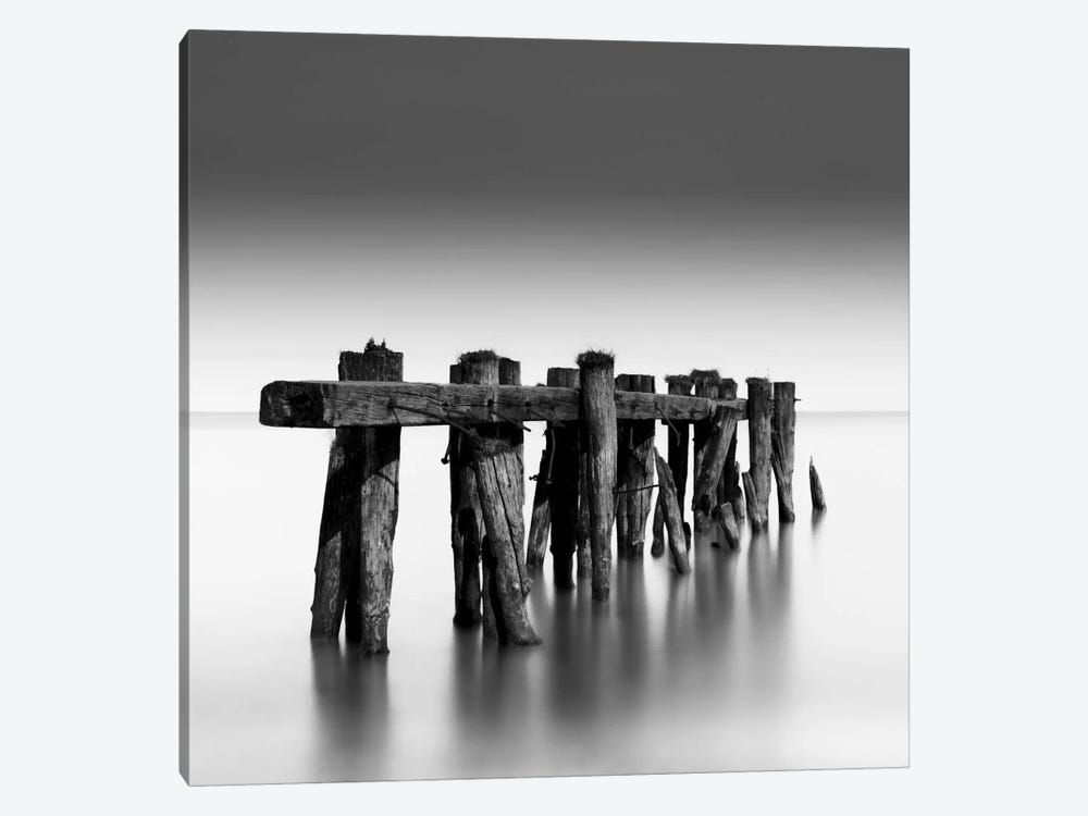 Weathered 1-piece Canvas Art