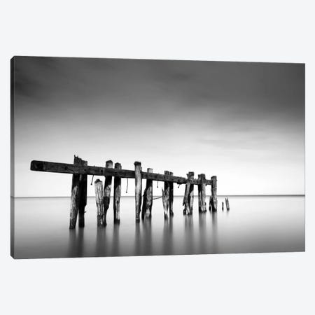 Defiance Canvas Print #DMV9} by Dave MacVicar Canvas Artwork