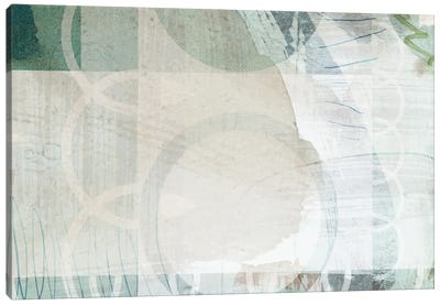Wild Conflation Canvas Art Print