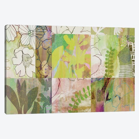 Sage Obscurity I Canvas Print #DNA15} by Delores Naskrent Canvas Art Print
