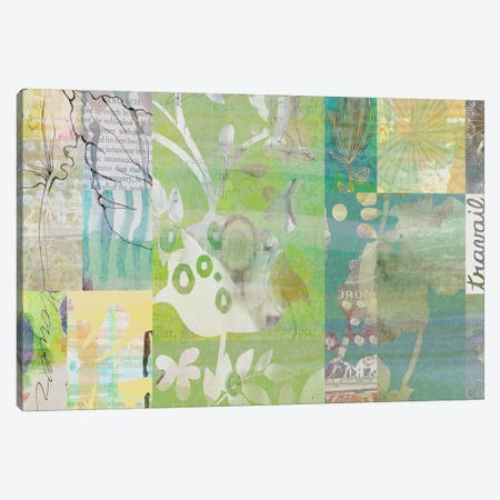 Sage Obscurity III Canvas Print #DNA17} by Delores Naskrent Canvas Print