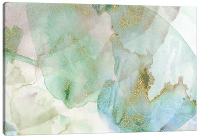 Carolina Skyscape Canvas Art Print