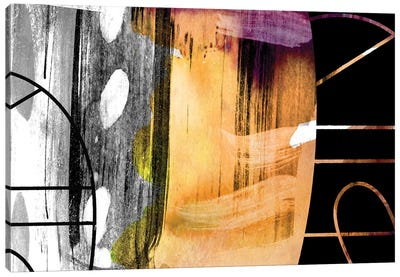 Graphite Canvas Art Print