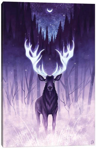 Light Of The Dark Canvas Art Print