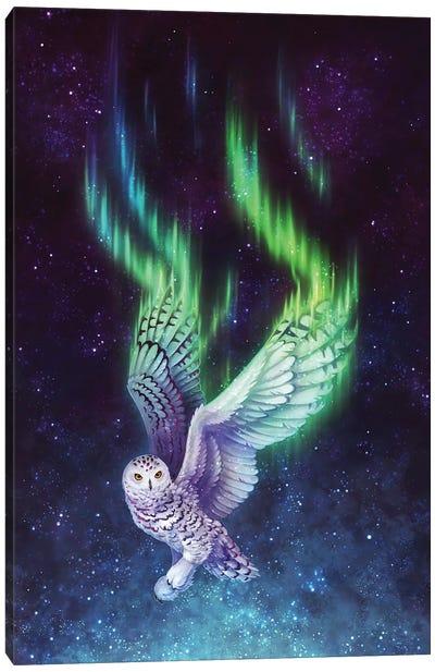 Aurora Flight Canvas Art Print
