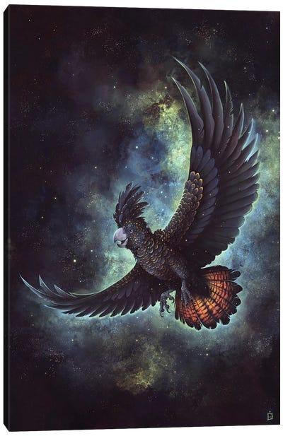 Starry Flight Canvas Art Print