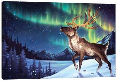 Under The Aurora Canvas Art Print
