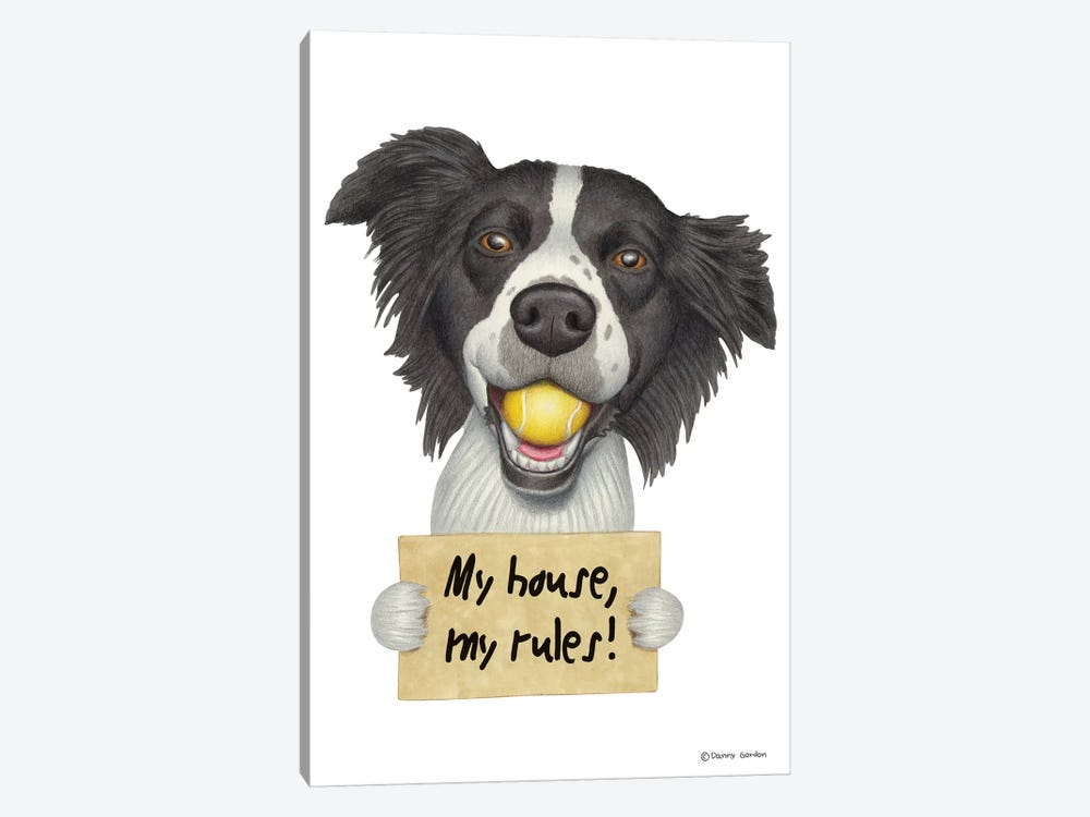 Border Collie by Danny Gordon 1-piece Canvas Art