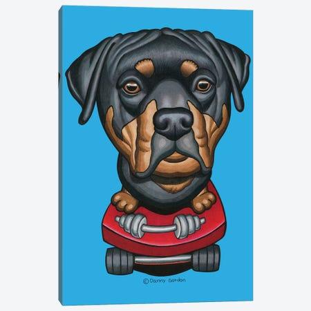 Rottweiler Skateboard Dumbells Canvas Print #DNG137} by Danny Gordon Canvas Wall Art