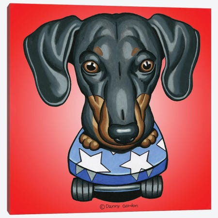 Dachshund Skateboard Stars Radial Red Canvas Print #DNG139} by Danny Gordon Canvas Print