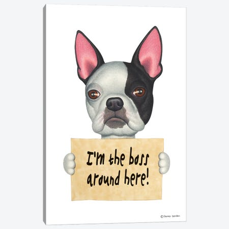 Boston Terrier I'm The Boss 3-Piece Canvas #DNG14} by Danny Gordon Canvas Art Print