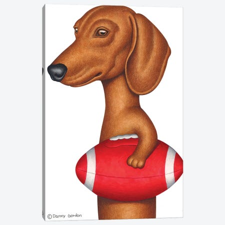 Dachshund Holding Football Canvas Print #DNG163} by Danny Gordon Canvas Art