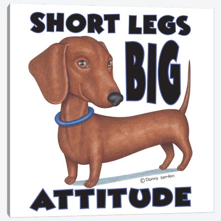 Dachshund With Blue Collar With Words Canvas Print #DNG169} by Danny Gordon Canvas Wall Art
