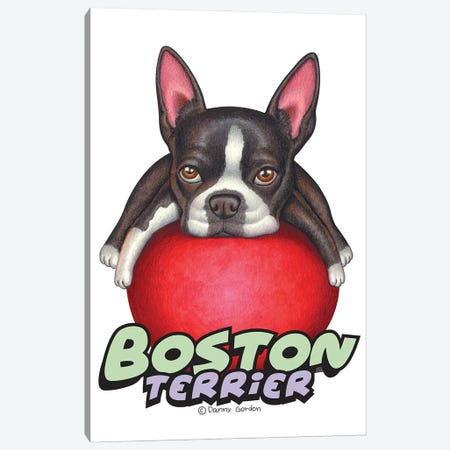 Boston Terrier Red Ball 3-Piece Canvas #DNG185} by Danny Gordon Canvas Art Print