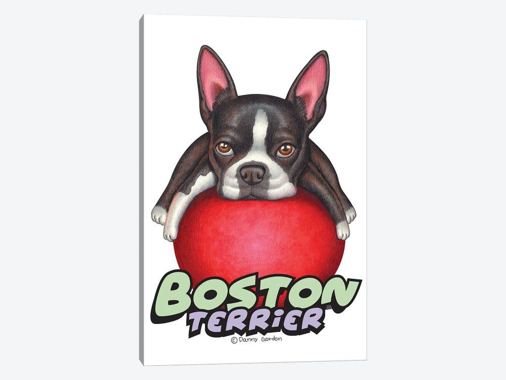Boston Terrier Red Ball by Danny Gordon 1-piece Canvas Wall Art