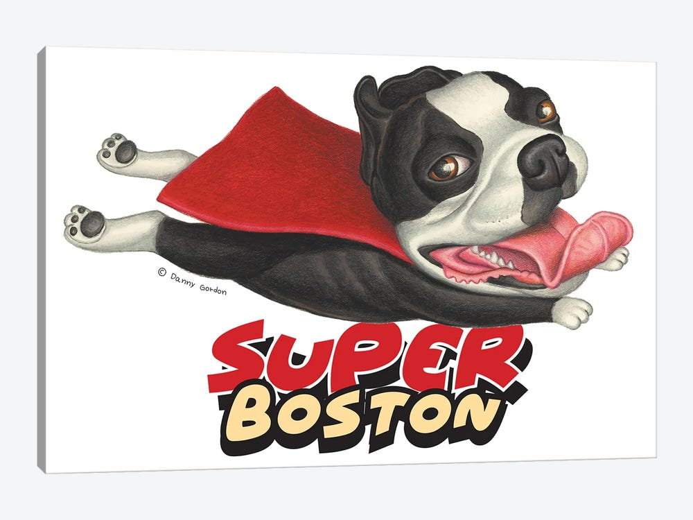 Boston Terrier Flying in Red Cape by Danny Gordon 1-piece Canvas Print