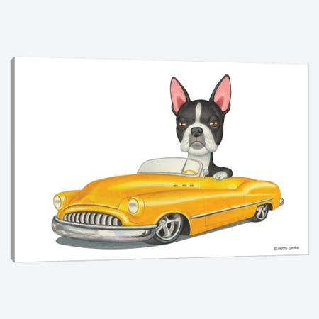 Boston Terrier Yellow Car Canvas Print #DNG18} by Danny Gordon Canvas Artwork
