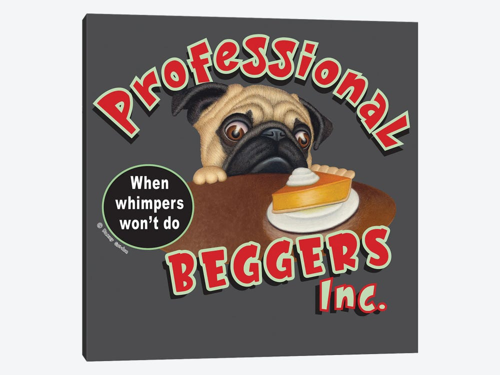 Pug Professional Begger by Danny Gordon 1-piece Canvas Artwork