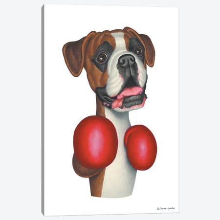 Boxer Boxing Canvas Print #DNG20} by Danny Gordon Canvas Art Print