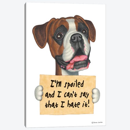 Boxer I'm Spoiled Canvas Print #DNG23} by Danny Gordon Canvas Art Print