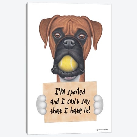 Boxer I'm Spoiled With Tennis Ball Canvas Print #DNG24} by Danny Gordon Canvas Artwork