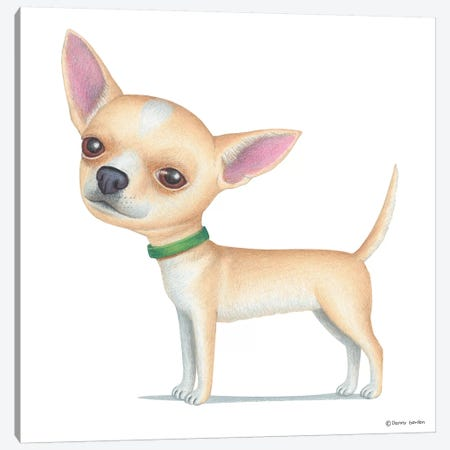 Chihuahua Tan Canvas Print #DNG32} by Danny Gordon Canvas Artwork