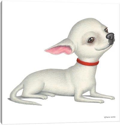 Chihuahua White Canvas Art Print