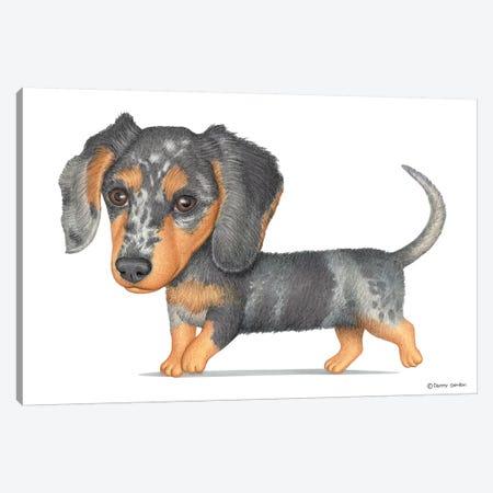 Dachshund Canvas Print #DNG37} by Danny Gordon Canvas Print