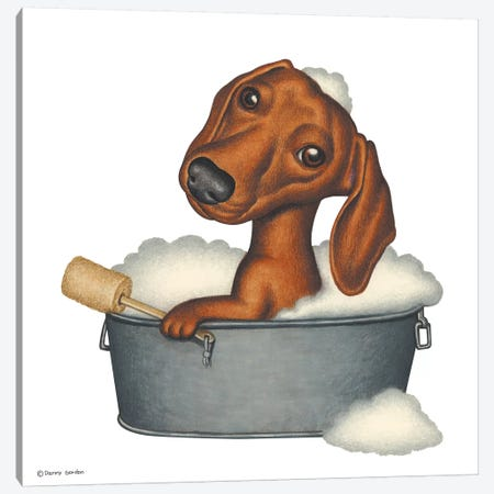 Dachshund Bath Canvas Print #DNG38} by Danny Gordon Canvas Wall Art
