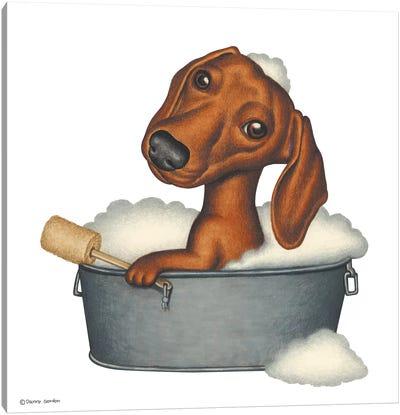 Dachshund Bath Canvas Art Print
